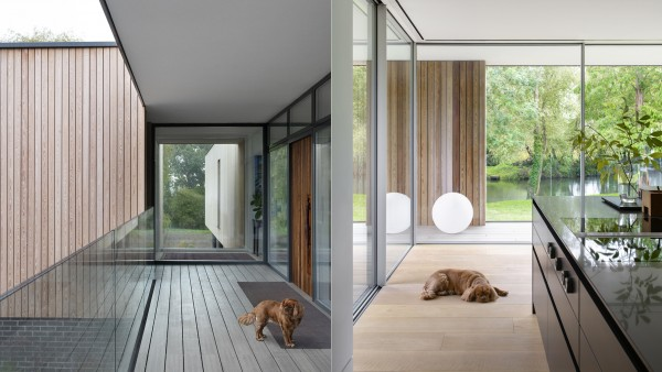 Contemporary Architecture NarulaHouse Resident Dog jpa